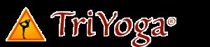 TY_Logo_51-300x67