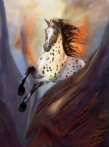 Pferd web